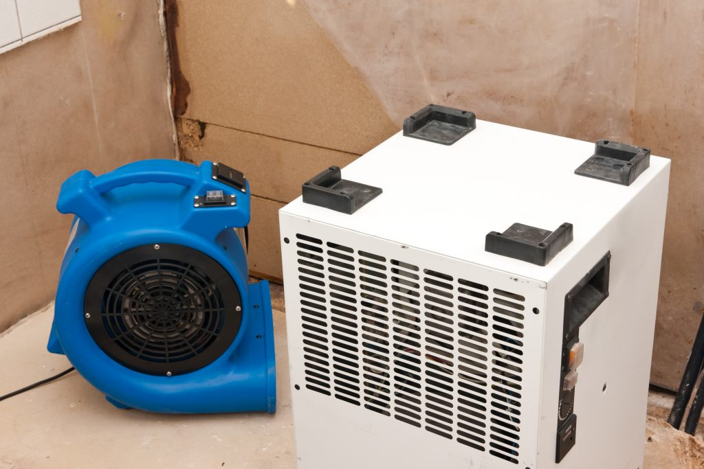 Drying and Dehumidification Service